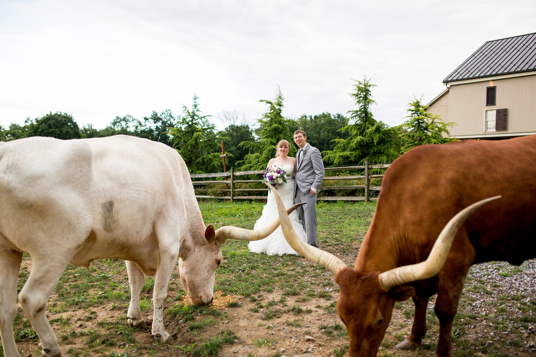 ironstone-ranch-elizabethtown-wedding